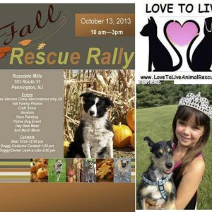 Alexandra Cristofoli, NAM Miss New Jersey Jr. Pre-Teen, gave her time to the Love To Live Animal Rescue