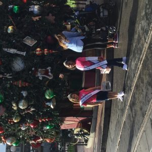 Hughes Christmas tree Disney 2016